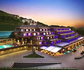 Divan Otel Bursa - Küçük