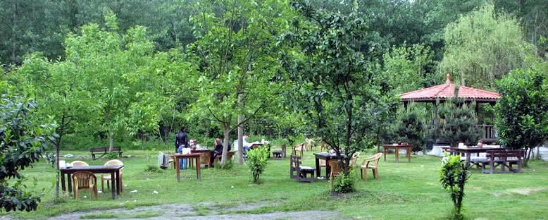 Piknik Alanları - Maşukiye