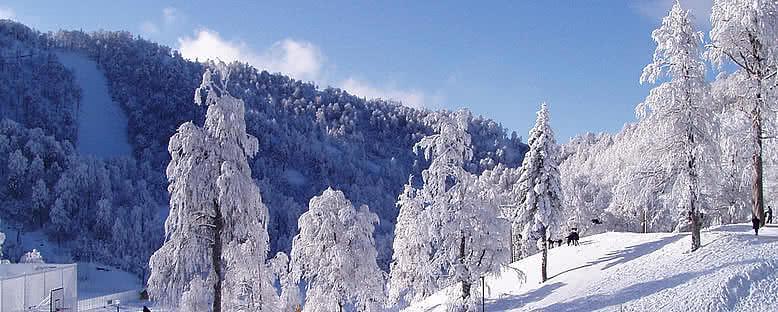 Kayak Pistleri - Kartepe