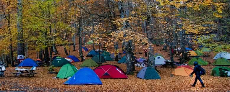 Kamp Alanları - Yedigöller