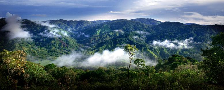 Chagres Ulusal Parkı - Panama