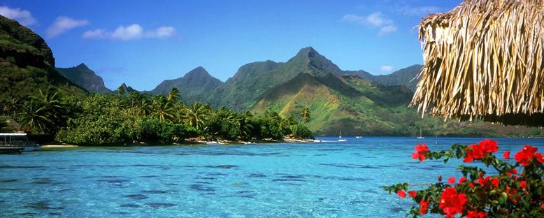 Doğa Manzarası - Bahamalar