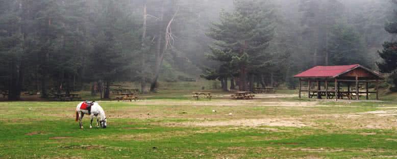 Tabiat Parkı - Abant
