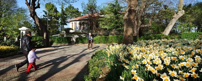 Baharda Yuşa Tepesi - İstanbul