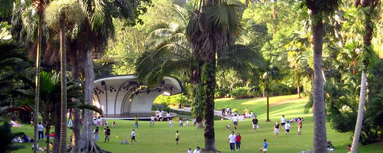Botanik Bahçesi - Singapur