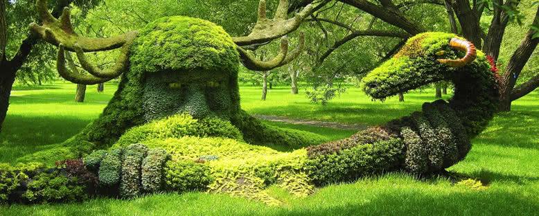 Botanik Bahçesi - Montreal