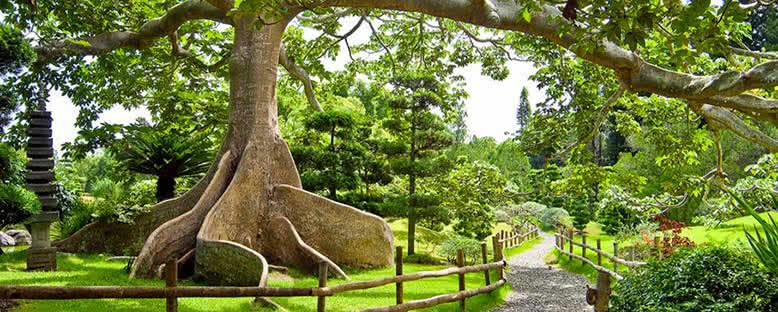 Botanik Bahçesi - Santo Domingo