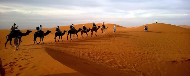 Çöl Gezileri - Katar