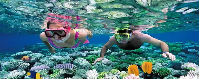 Dalış Keyfi - Cancun