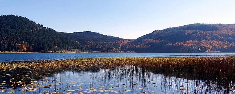 Doğa Parkı - Abant