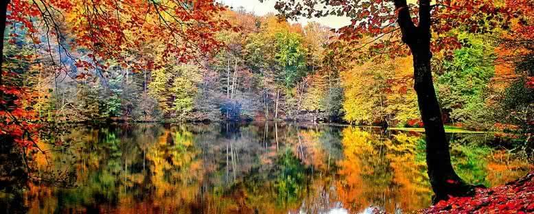 Doğal Güzellikler - Yedigöller