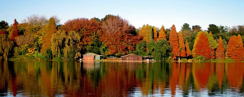 Emmerantia Gölü - Johannesburg