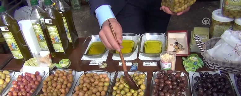 Festival Tezgahları - Ayvalık Zeytin Hasadı Günleri