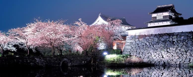 Gece Işıklarıyla Kale - Fukuoka