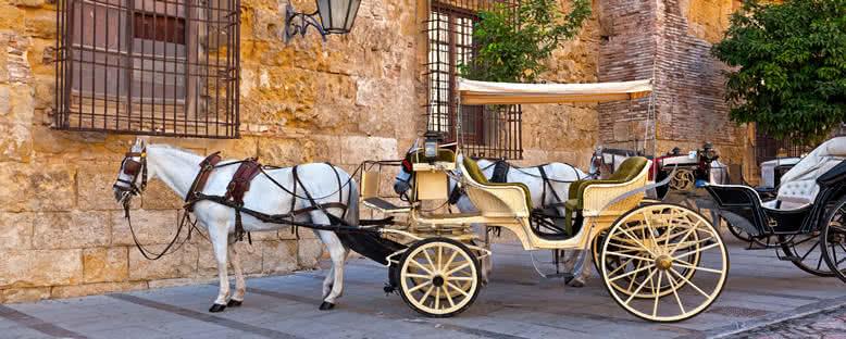 Geleneksel At Arabası - Cordoba