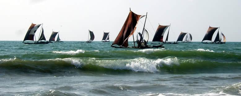Geleneksel Tekneler - Negombo