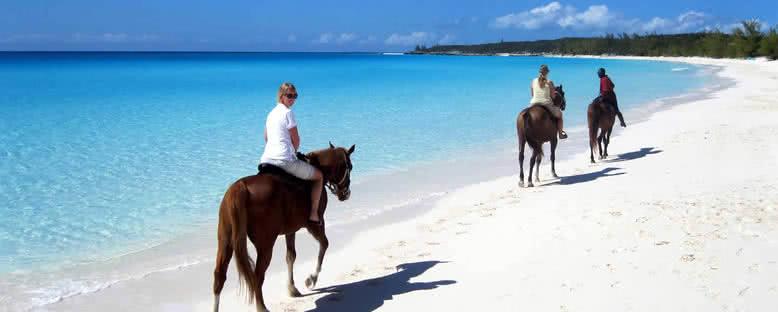 At Gezisi - Punta Cana