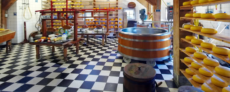 Gouda Peynir Fabrikası - Amsterdam