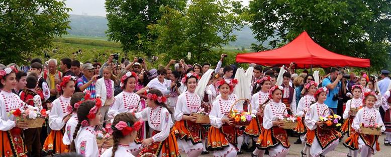 Gül Toplama - Kazanlık Gül Festivali
