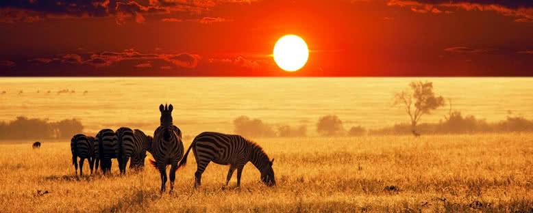 Günbatımı Manzaraları - Pilanesberg Ulusal Parkı