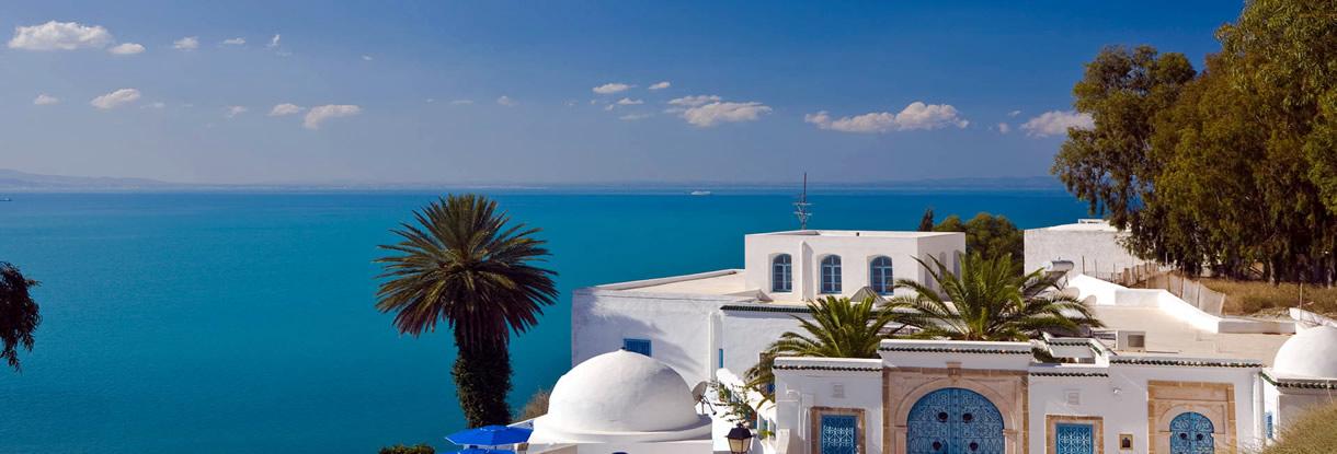 Tunus Hammamet Turları