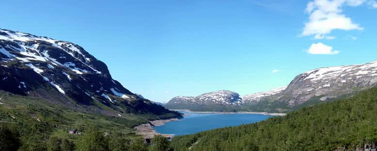 Hardangervidda Ulusal Parkı - Norveç