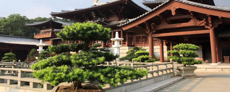Chi Lin Budist Tapınağı - Hong Kong
