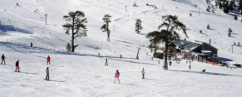 Kayakçılar - Kartalkaya