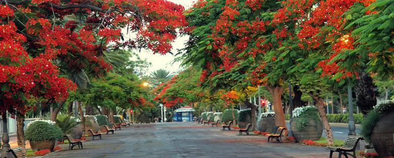 Kent Sokakları - Santa Cruz de Tenerife