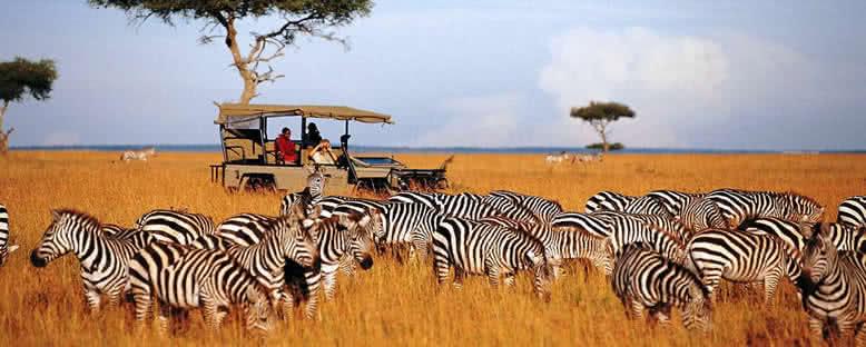 Safari Turları - Masai Mara