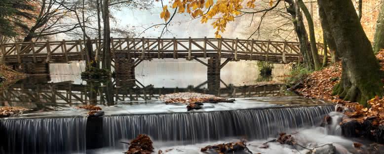 Köprü ve Dere - Yedigöller