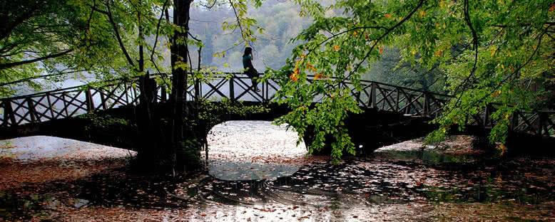 Köprü - Yedigöller