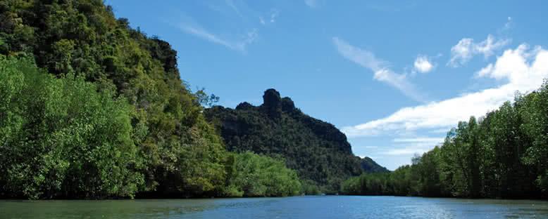 Mangrov Ormanları - Langkawi