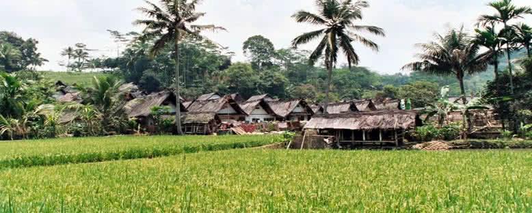 Naga Köyü Evleri - Baturaden