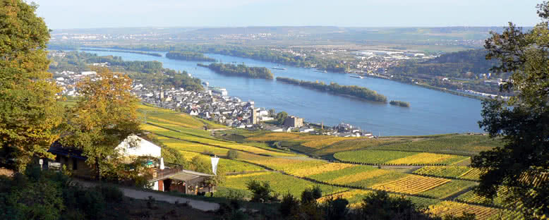 Nehir Manzarası - Rüdesheim