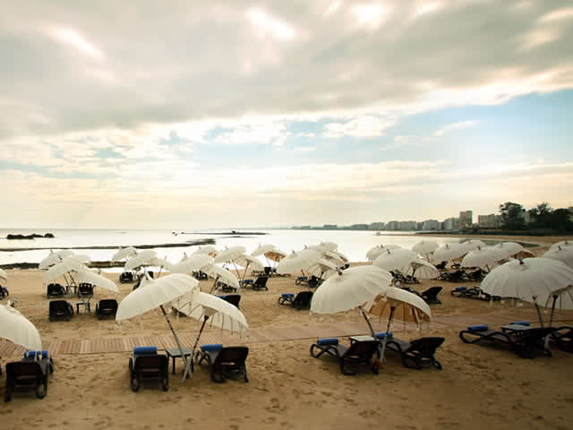Özel Plaj - Arkın Palm Beach Hotel