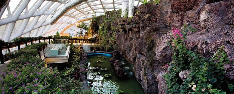 Park Görünümü - Konya Tropikal Kelebek Bahçesi