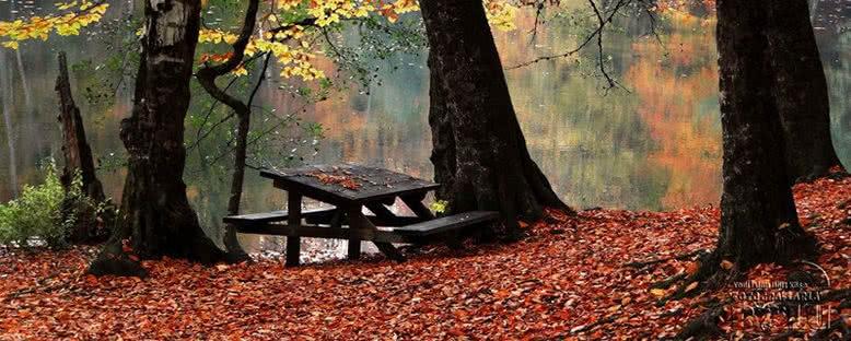 Piknik Masası - Yedigöller