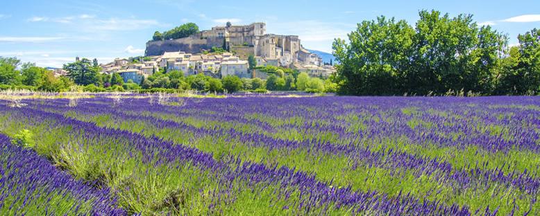 Provence Manzaraları - Aix-En-Provence