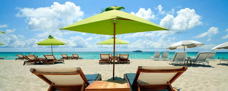 Güneş Keyfi - Miami