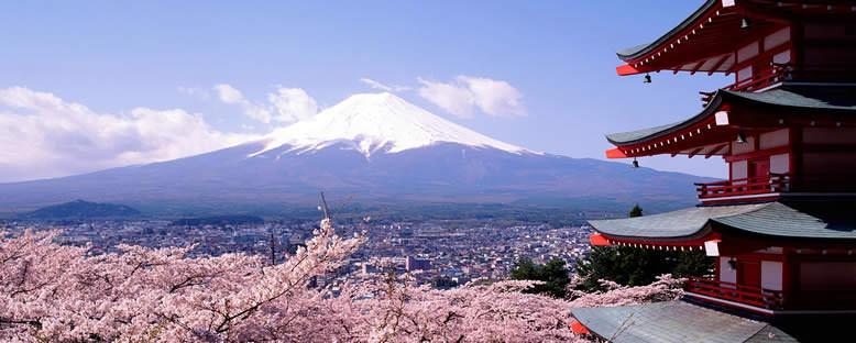 Fuji Dağı - Tokyo