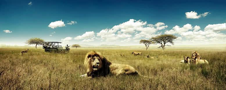 Safari Keyfi - Pilanesberg Ulusal Parkı