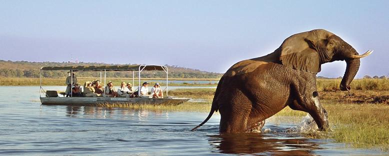 Safari Keyfi - Zambiya
