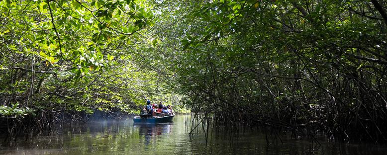 Sebung Nehri - Bintan