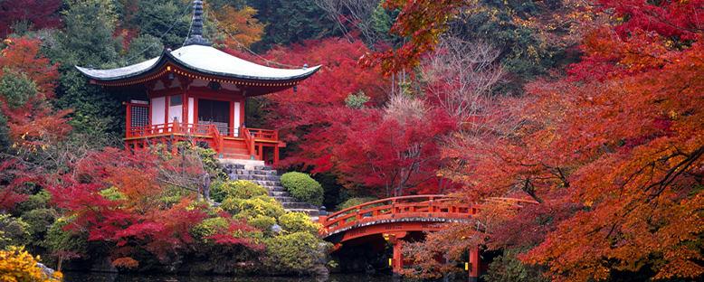 Sonbahar Manzarası - Kyoto