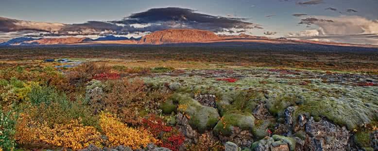 Sonbahar - Thingvellir Ulusal Parkı