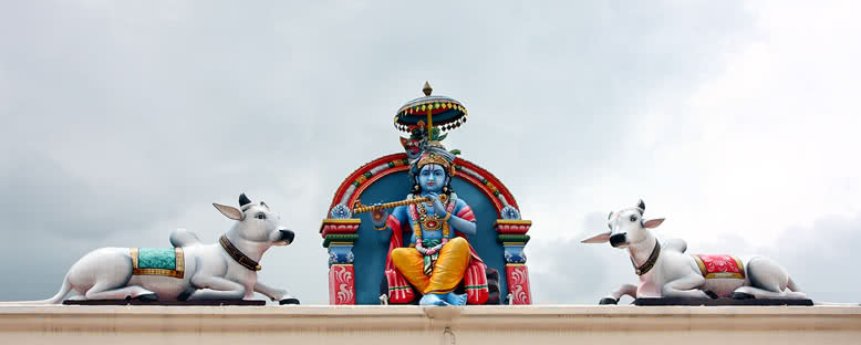 Sri Mariamman Tapınağı - Singapur