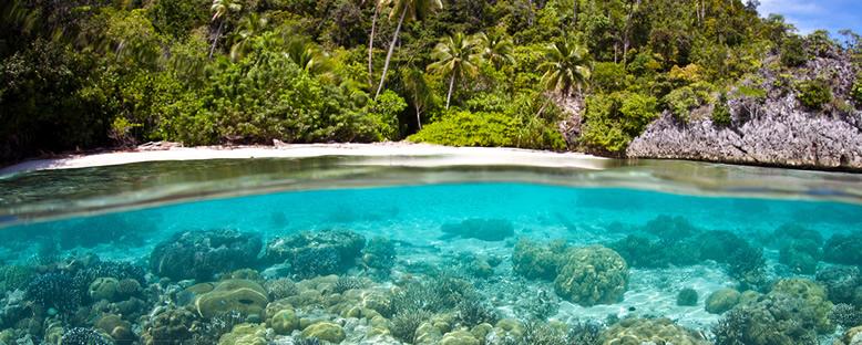 Su Altı Güzellikleri - Vanimo