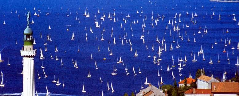 Yelkenli Yarışı - Trieste